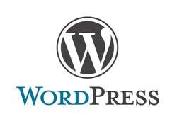Did You Know About WordPress 3.0?